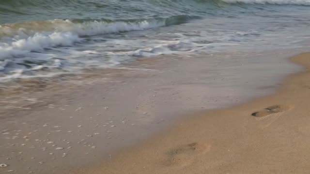 Wave washes away footprints in the sand video