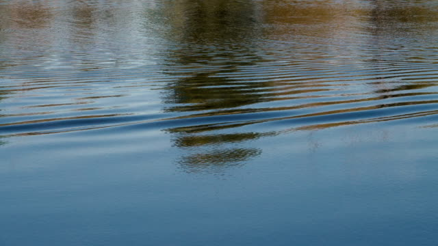 Waves and reflections on the water surface in the river.