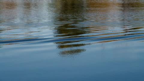 wellen und reflexionen auf der wasseroberfläche des flusses. - see stock-videos und b-roll-filmmaterial