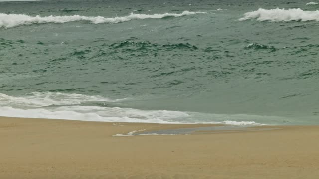 Waves at Lit-et-Mixe Beach video