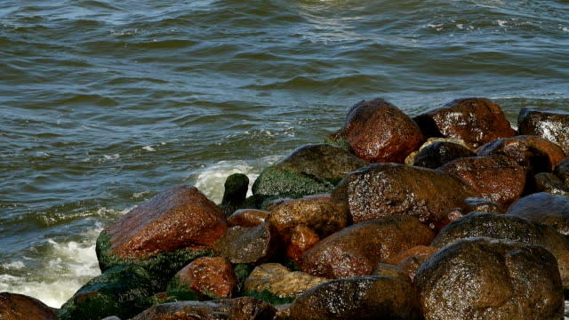 Bидео Waves breaks about rocks on the sea. Small waves and round stones