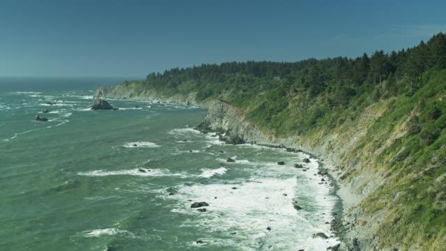 Waves Crashing on Cliffs Beneath Northern California Redwoods - Drone Shot