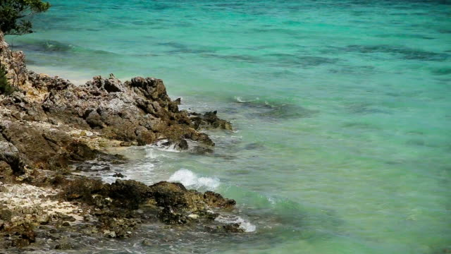 Waves of the tropical sea hit rocks video