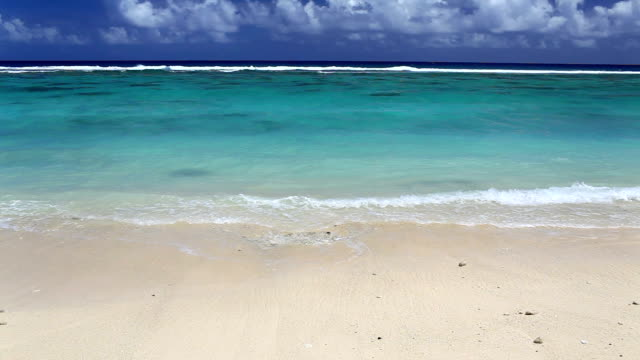 Waves on a deserted tropical beach video