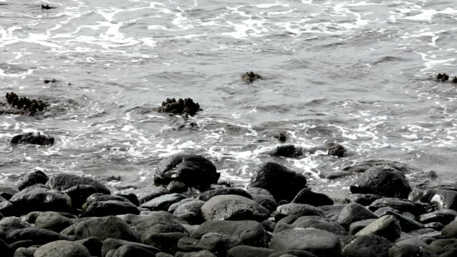 Waves on Rocks video
