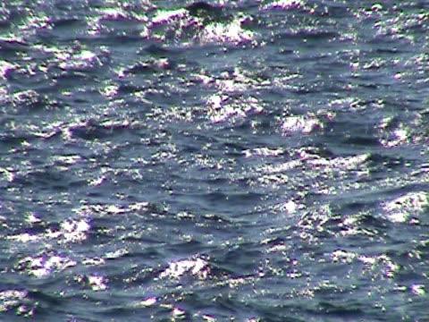 Waves on the ocean video