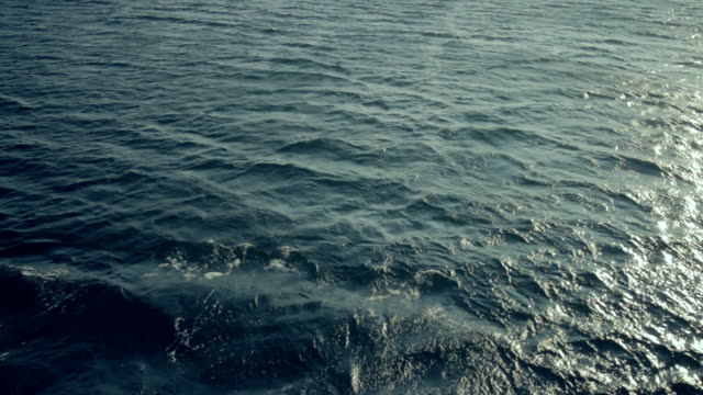 Waves on the sea video