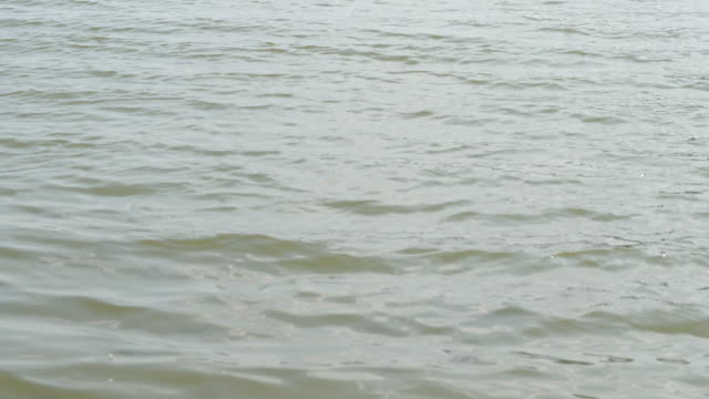Waves on the water surface in the lake