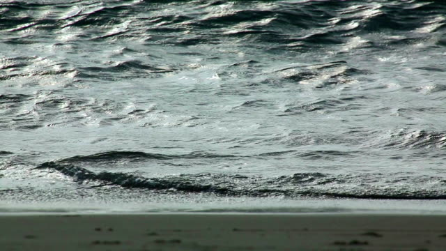 vídeos y material grabado en eventos de stock de las olas - miembro humano