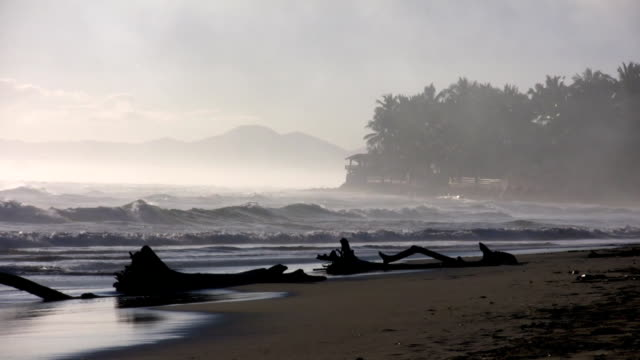 Waves wash up onto foggy beach before sunrise (High Definition) video