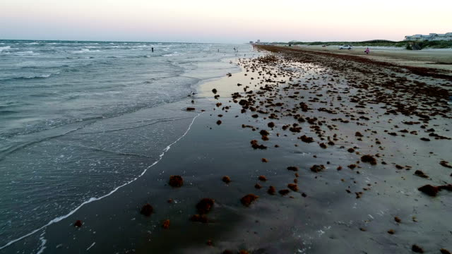 waves washing ashore beach front on padre island at sunset - gulf coast states stock videos & royalty-free footage