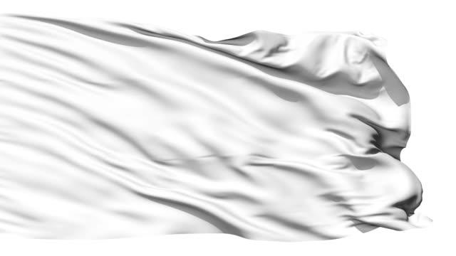 vídeos de stock, filmes e b-roll de acenando a bandeira branca em branco - flag