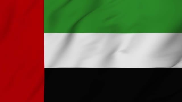 bae 4k bayrak sallayarak - uae flag stok videoları ve detay görüntü çekimi
