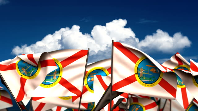 Waving Florida State Flags Waving Florida State Flags (seamless & alpha channel) florida us state stock videos & royalty-free footage