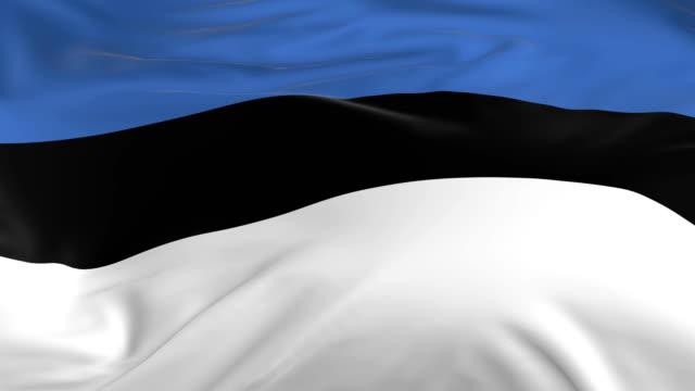 stockvideo's en b-roll-footage met vlag zwaaien lus als achtergrond estland - estland