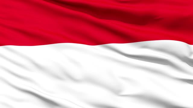 Waving national flag of Monaco video