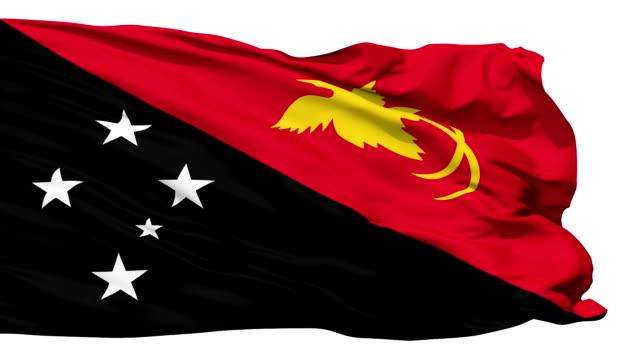 Waving national flag of Papua New Guinea video