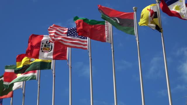 waving national flags - bandiera nazionale video stock e b–roll
