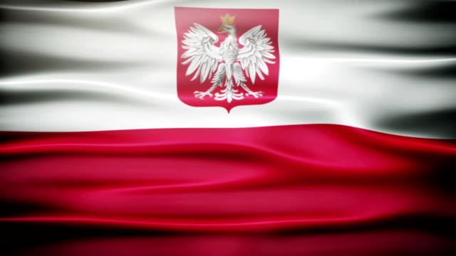 winken polnische flagge. - polnische kultur stock-videos und b-roll-filmmaterial