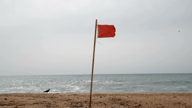 waving red warning flag on the beach - proibizione video stock e b–roll