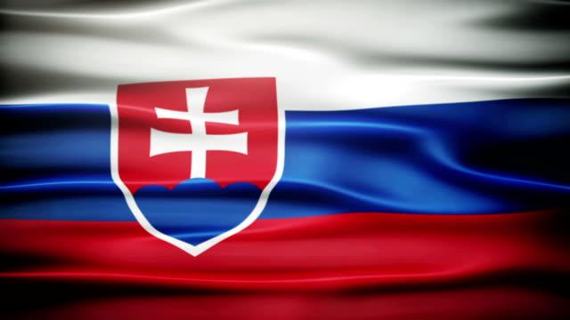 размахивающий лапами флаг словакии. - славянская культура стоковые видео и кадры b-roll