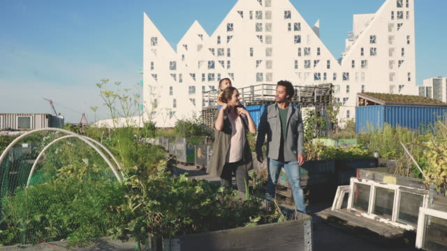 we live in the city, but still have a garden - danimarca video stock e b–roll