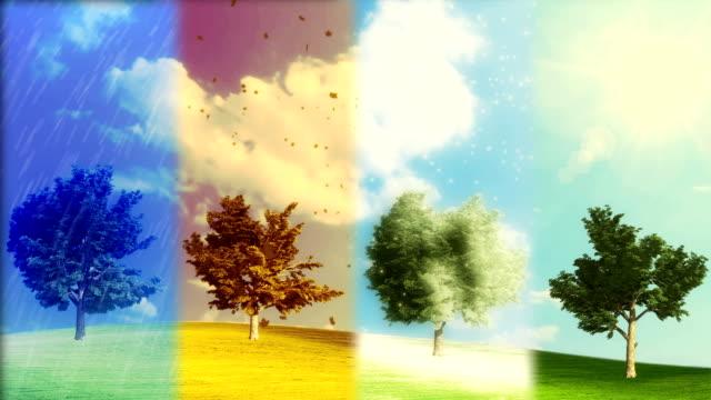 weather forecast - four seasons 個影片檔及 b 捲影像