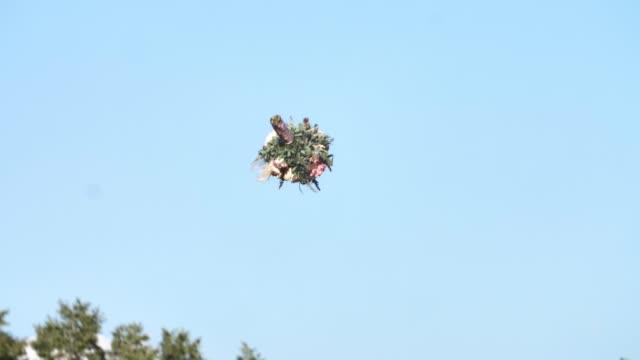 Wedding bouquet flies in the air.
