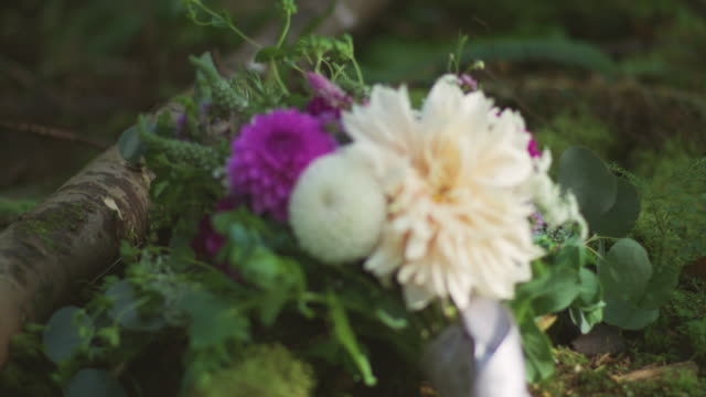 wedding bouquet floral arrangement isolated in the forest - триллиум стоковые видео и кадры b-roll