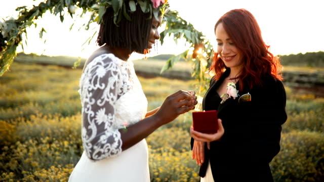 vídeos y material grabado en eventos de stock de ceremonia de boda lgbtqi - novio relación humana
