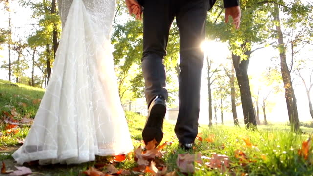 Wedding couple in autumn walk video