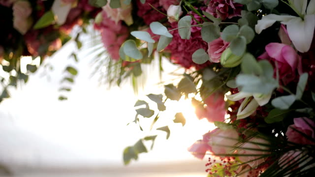 wedding flowers - trillium video stock e b–roll