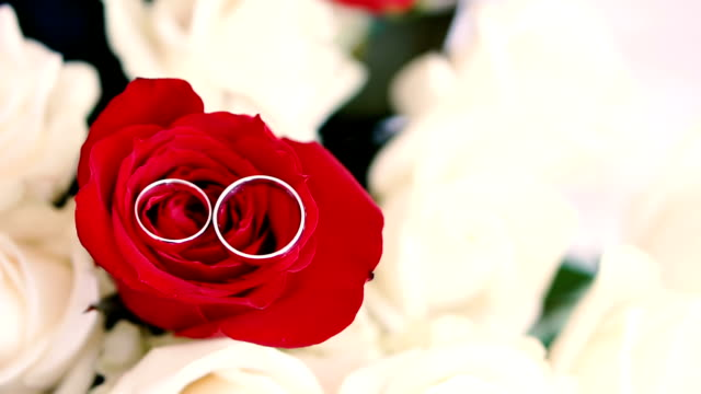Wedding rings on a bouquet of roses. Jewelry for the newlyweds. Wedding accessories video