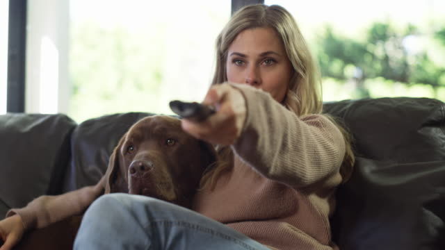 Weekend goals 4k video footage of a young woman relaxing on the sofa with her dog and watching television changing channels stock videos & royalty-free footage