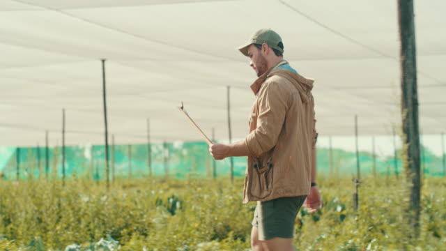 vídeos de stock e filmes b-roll de welcome to the farm! - rancho quinta