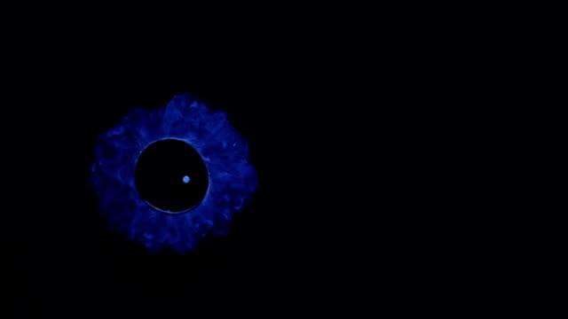 şey, biraz karanlık daire, süslü değil mi? - süslü püslü stok videoları ve detay görüntü çekimi