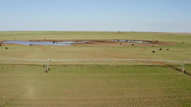 West Texas Landscape: Rural ranch land