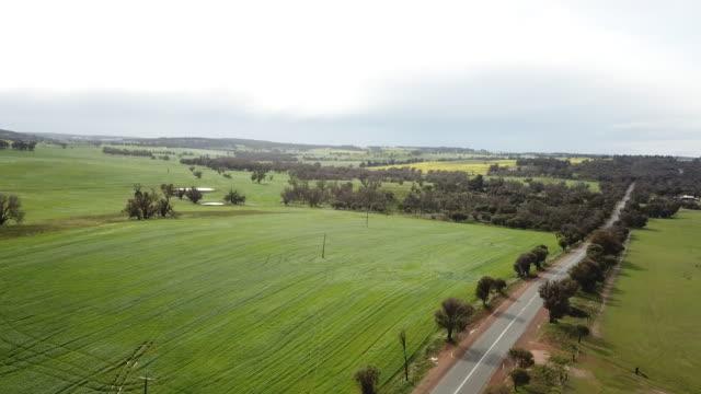 western australian farmland & pastures. drone. - western australia stock videos & royalty-free footage