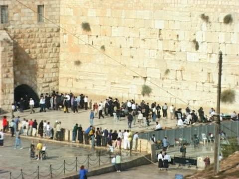 ntsc-westlichen mauer, jerusalem, israel - tora stock-videos und b-roll-filmmaterial