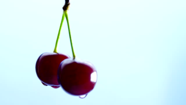 Wet cherry berries spin on a blue background Wet cherry berries spin on a blue background light cherry stock videos & royalty-free footage