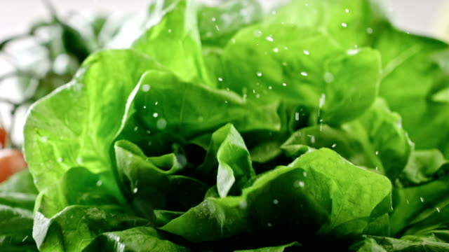 wet lettuce falling onto a table in slow motion - lattuga video stock e b–roll