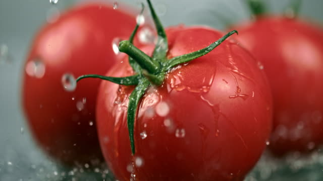 slo mo cu wet tomatoes falling on a table - pomodoro video stock e b–roll