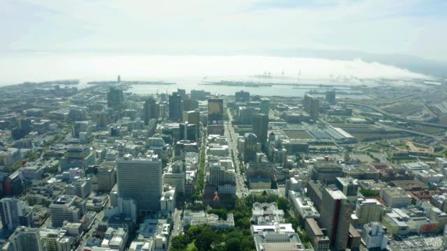 なんて広大な都市 - 南アフリカ共和国点の映像素材/bロール