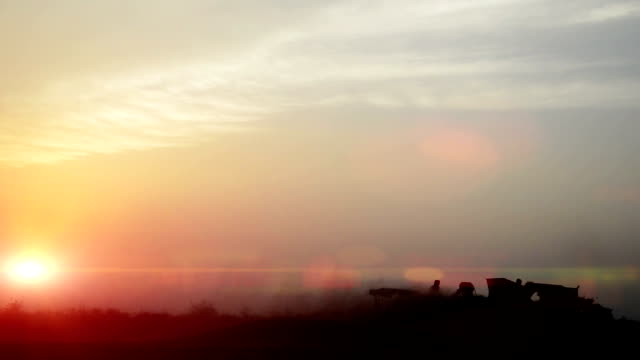Wheat crop harvesting during sunset video