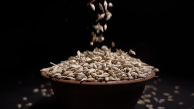 小麦の粒が板の高さから落ちる - 大麦点の映像素材/bロール