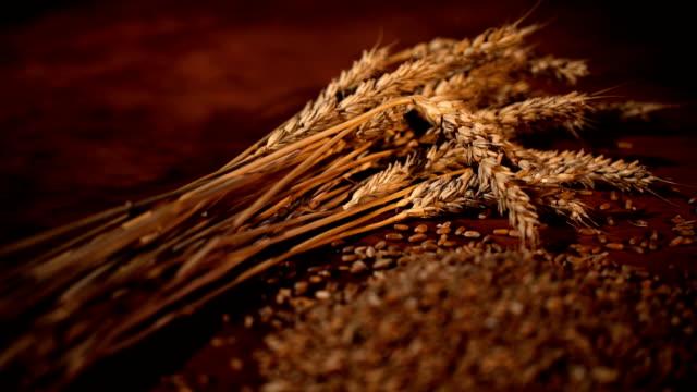 小麦粒はバック グラウンドで小麦の束、スローモーションで落ちています。スライダーで撮影します。 - グルテンフリー点の映像素材/bロール