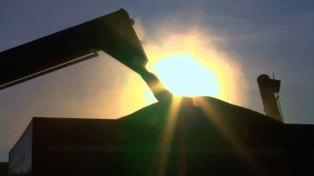 Wheat Loading Silhouette video