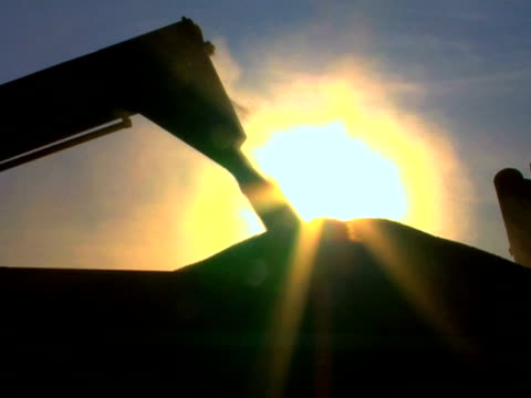 Wheat Loading Silhouette video