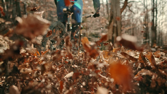 slo mo wheels of the mountain bike moving through leaves in the forest - bike tire tracks video stock e b–roll