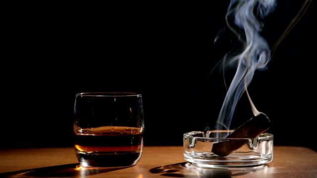 fumare sigari e whisky bevande - scotch whisky video stock e b–roll
